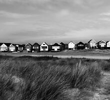 Beach Huts over the Dune by Marcus Walters