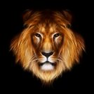 artistic lion portrait by Aimelle