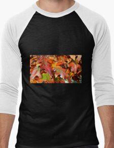 Fall Fun Men's Baseball ¾ T-Shirt