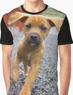 Puppy fun Graphic T-Shirt
