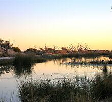 Mungerannie Wetlands Dusk by BronwynParry186