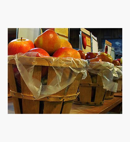Bushels of Apples Photographic Print
