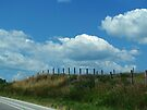 The Clouds Are Not Fenced In by Nevermind the Camera Photography