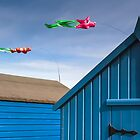 Windsocks and Beach huts by timmburgess
