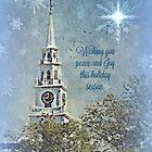 Happy Holidays by Scott Mitchell