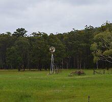 Windmills of the past by Judy Woodman