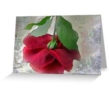 When the world seems in a jumble ... stop and smell a rose! Greeting Card