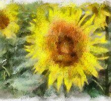 Sonnenblumen by Roland Richter
