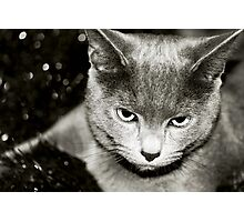 Silver Photographic Print