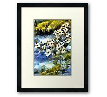 Kirschblüte Framed Print