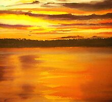 Heat of the Night, Sunset  by Linda Callaghan