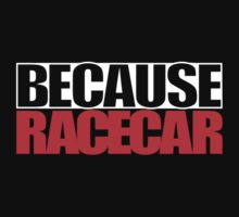 Because Racecar by ApexFibers