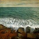 Beside the Sea IV by Sharon Johnstone