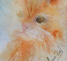 Here Kitty by LuciaM