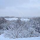 Kyiv Landscape Valley by Anton Gorlin
