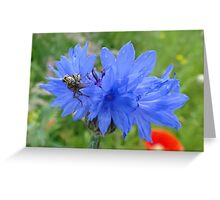 Dining At The Cornflower Table Greeting Card