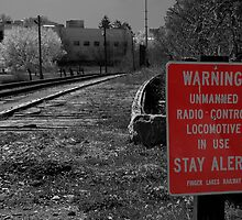 Warning! by Elizabeth Carpenter
