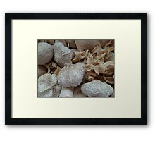wood art Framed Print
