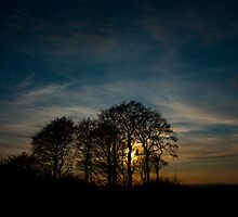 Woodborough Hill, Wiltshire by SwampDogPhoto