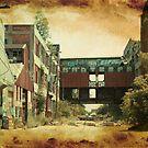 Packard Plant, Detroit, Michigan by jrier