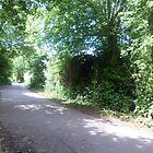 road sceen 2 by damion pomfrett