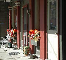 Store Fronts by Elizabeth Carpenter