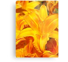 Warmth - Vibrant Yellow Flower Metal Print