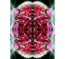My brain Photographic Print