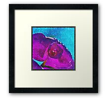 Perfect Face in the Morning Framed Print
