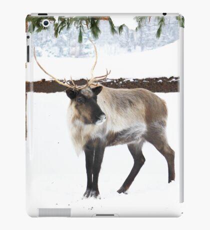 Reindeer for Christmas. iPad Case/Skin