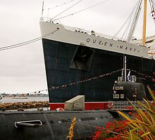 The Queen Mary by lisa roberts