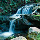 Leura Cascades by Steve Randall