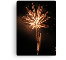 Tree of Fireworks Canvas Print