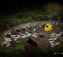 unforgotten by StoneAge