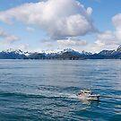 Pilot Boat alongside, Inside Passage, Canada, 2012. by johnrf