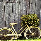Yellow Bike With Flowers by mamasita