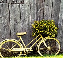 Yellow Bike With Flowers by mamasita