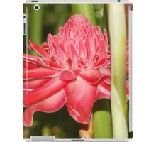 Red Torch Ginger. iPad Case/Skin