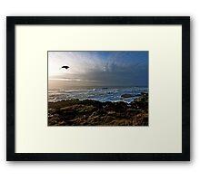 Flying by Framed Print