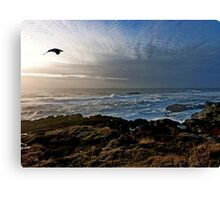 Flying by Canvas Print