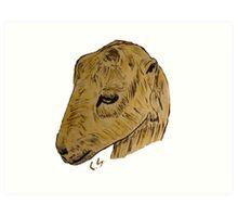"""Lamancha Goat""  by Carter L. Shepard Art Print"