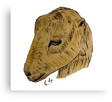 """Lamancha Goat""  by Carter L. Shepard Canvas Print"