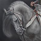 Spanish horse portrait by artbykarie-ann