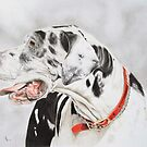 Great Dane Dog Portrait by artbykarie-ann