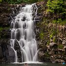 Swimming Falls by Keith Irving