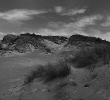 Elemental Sand Dune - Texture and Skies by Mark Haynes Photography