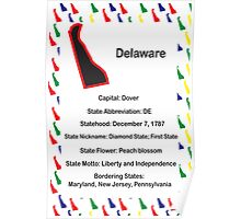 Delaware Information Educational Poster