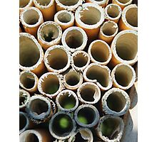 insect hotel Photographic Print