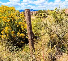 New Mexico Fence by bengraham