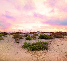 Dunes of Boca Grande by Ticker